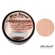 Pastel Macarons Acryl-Pulver Orange Blossom
